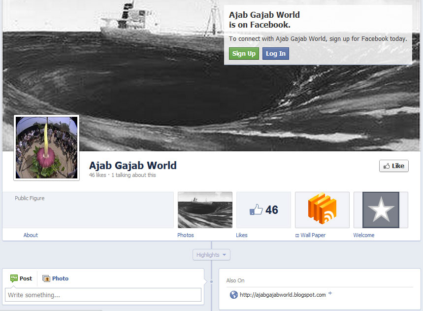 Facebook Brand Page Timelines